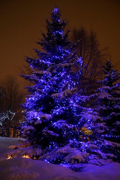 Alaska_Christmas_2012_Raw152