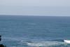 Miata_Drive_Coast_2013_0060