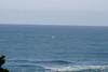 Miata_Drive_Coast_2013_0059