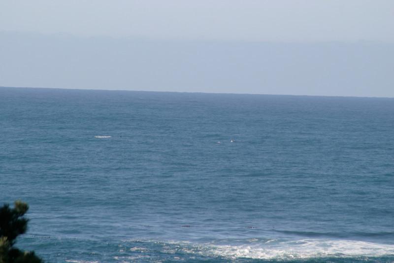 Miata_Drive_Coast_2013_0050
