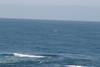 Miata_Drive_Coast_2013_0061