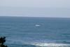 Miata_Drive_Coast_2013_0053