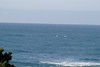 Miata_Drive_Coast_2013_0052