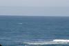 Miata_Drive_Coast_2013_0058