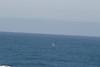 Miata_Drive_Coast_2013_0065