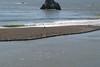 Miata_Drive_Coast_2013_0016