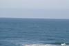 Miata_Drive_Coast_2013_0055