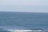 Miata_Drive_Coast_2013_0054