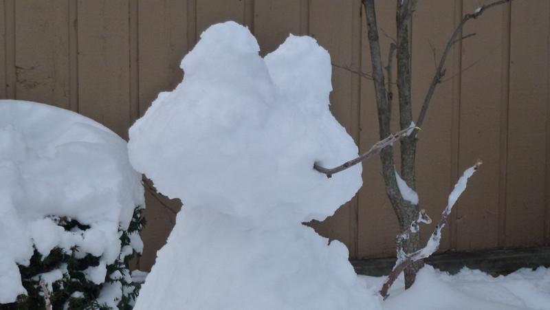 Snow-Frog?