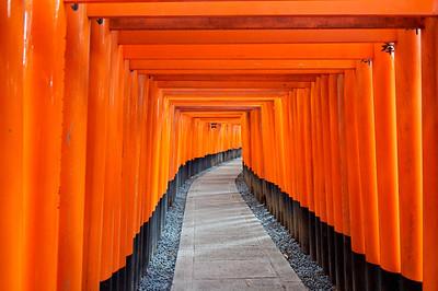 The many Torii gates at Fushimi Inari Taisha in Kyoto.