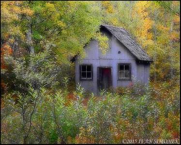 """NO FRILLS 2"",Glenora Guest Ranch,B.C.,Canada."