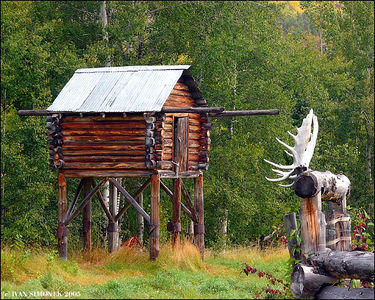 """FOOD CACHE 1"", Glenora Guest Ranch,B.C.,Canada-----""SPIZIRNA"", Glenora guest ranch,B.K.,Kanada."
