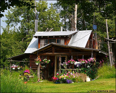 """WILDERNESS HOME"", Glenora Guest Ranch,B.C.,Canada----""DOMOV V DIVOCINE"",Glenora guest ranch,B.K.,Kanada."