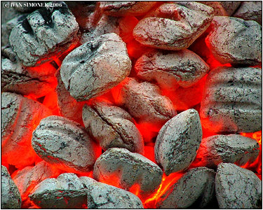 """HOT COALS"", Glenora Guest Ranch, B.C., Canada-----""ZHAVE UHLIKY""."
