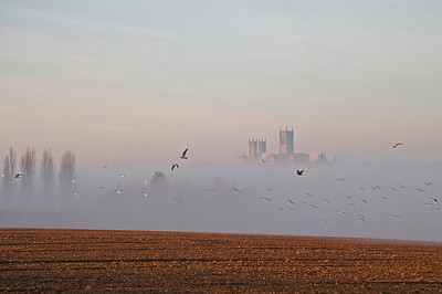 Lincoln Cathedral from the south-east, with the river valley filled with fog