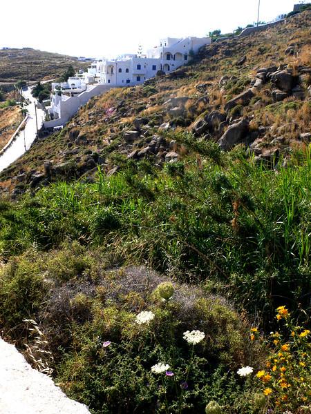 Greece - June 2011 176