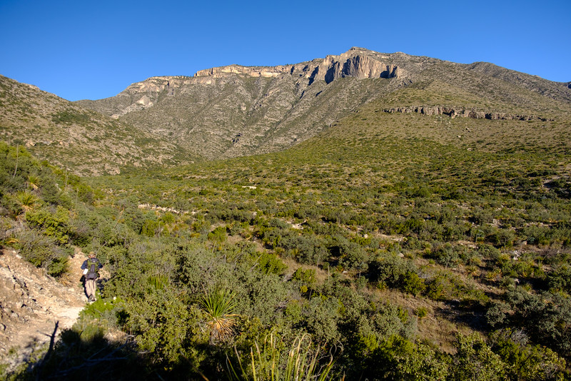 TRAILHEAD LEADING INTO MCKITTRICK CANYON