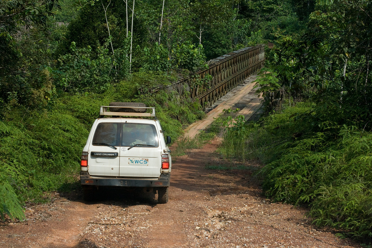 Taking the wild road out of Ivindo National Park.