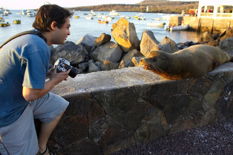 Alexis, with a Galapagos sea lion (Galapagos - San Cristobal)