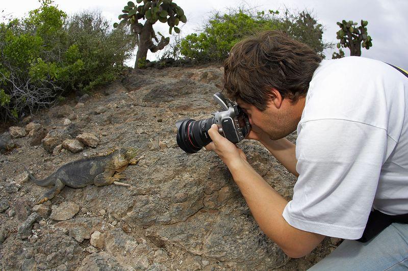 Alexis Tabah photographs a Galapagos land iguana (Conolophus subcristatus) (Galapagos - South Plazas)