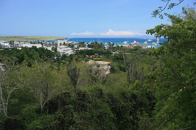 Puerto Ayora on Santa Cruz, population 18,000.