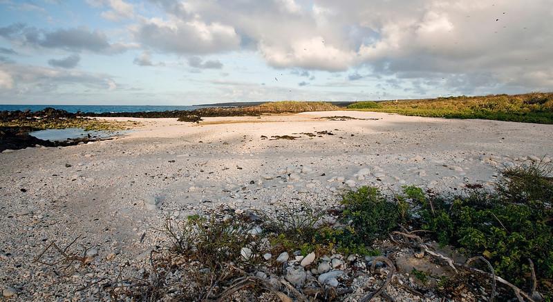 Darwin Bay (Tower Island)