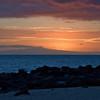 Sunset (North Seymour Island)
