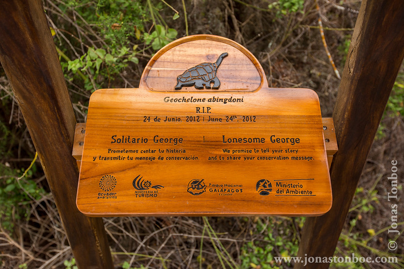 Lonesome George Sign