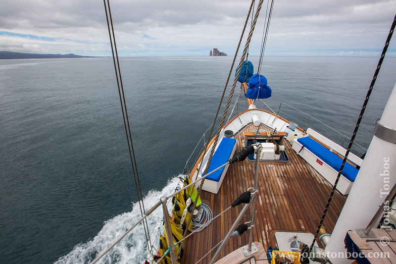 Cachalote Approaching Kicker Rock