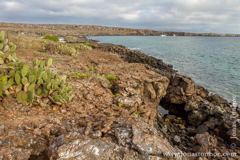 Island Scenery