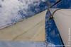 Cachalote Sails