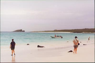 Galapagos  1 June 2000: Hood - Punta Suarez - 02