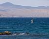 Photo taken 06-27-2008.  A pelican diving in the ocean.