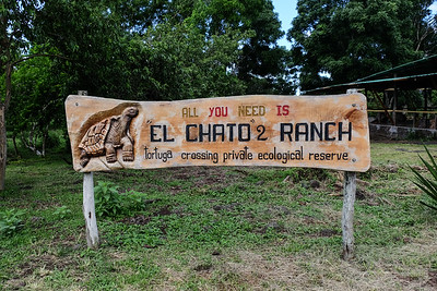 El Chato Turtle Ranch and Ecological Reserve -  Santa Cruz, Galapagos.