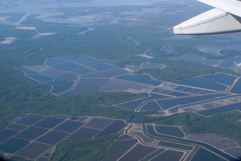 Shrimp aquaculture ponds near Guayaquil, Ecuador