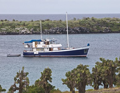 The Samba, Only 14 Passengers, 8 Crew plus a Galapageno Naturalist.  7 Staterooms