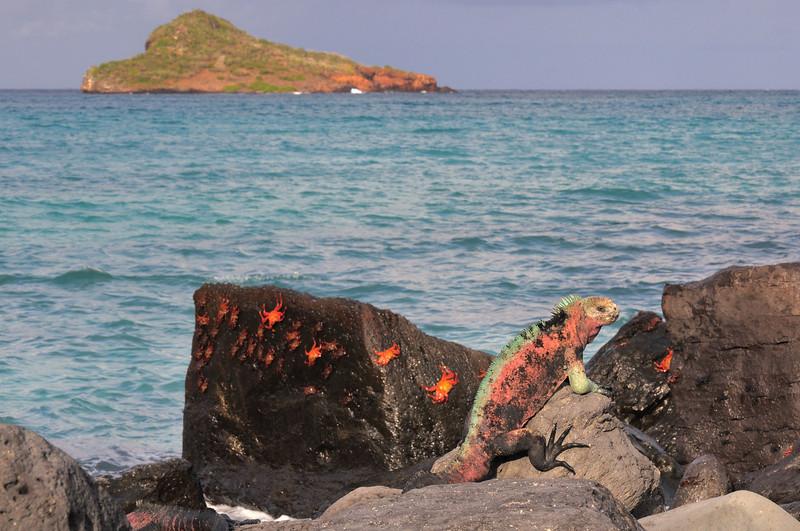 Isla Espanola scene