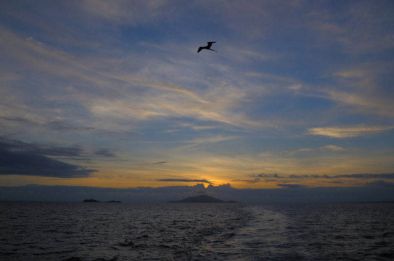 Another gorgeous sunset with a cooperative Frigate bird.