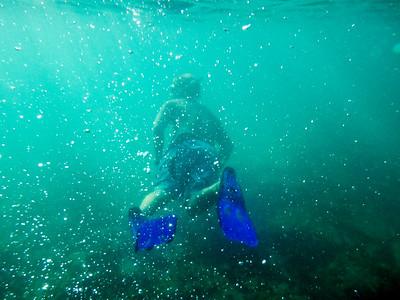 David snorkeling