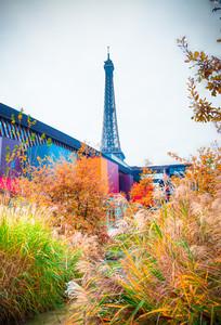 Eiffel Tower from the Musée du Quai Branly