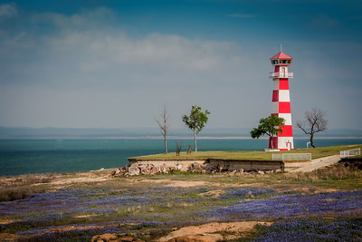 Lighthouse with Bluebonnets-1