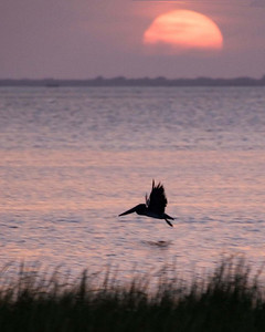 Galveston, August 2007