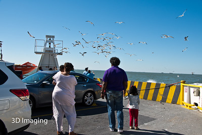 Galveston Island 2016