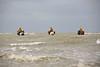 Oostduinkerke - Garnalenvissers te paard