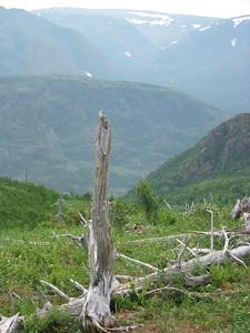 Mont Ernest-Laforce