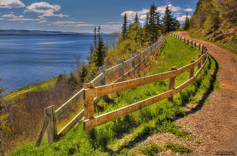 Trail by the sea