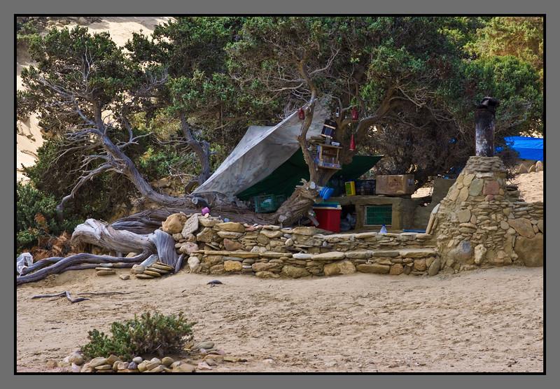 Living among the old cedar trees<br /> Camp site, Agios Ioannis beach