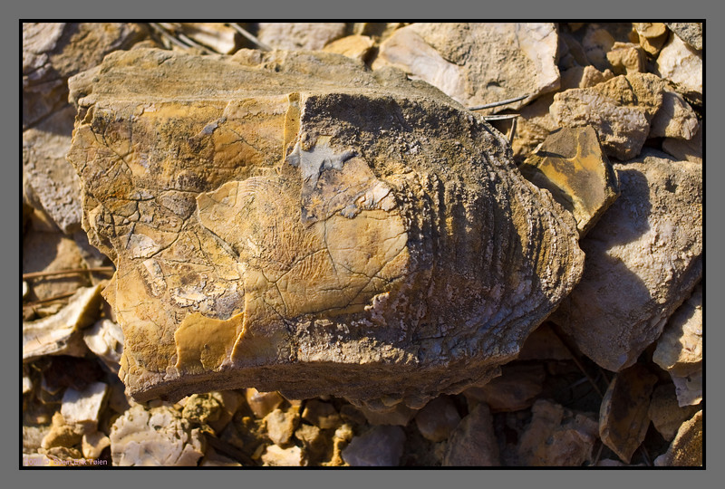 Ground structure - pieces of layered and folded rock