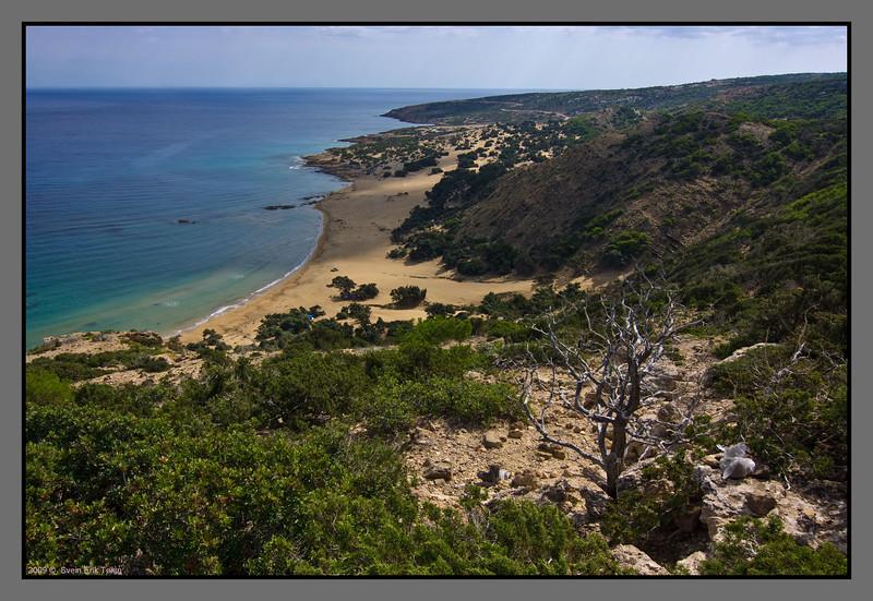 Agios Ioannis beach from above