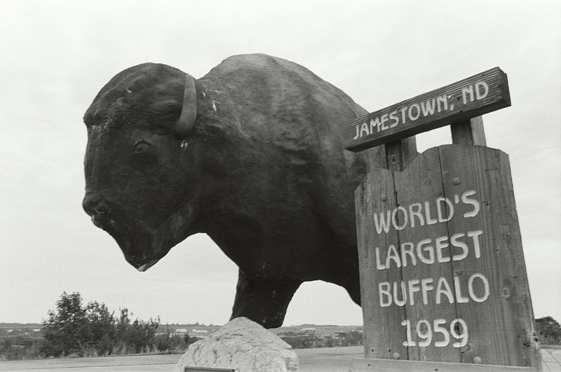 World's Largest Buffalo, Jefferson ND